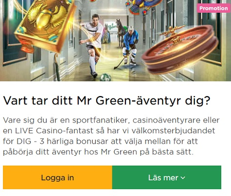 Öppna luckor i Mr Greens Julkalender 2019 nu!